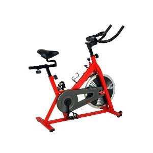 Sunny-SF-B1001-Indoor-Cycling-Bike